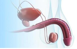 什么是阴茎延长手术 阴茎延长优势