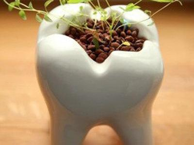 什么是种植牙 和传统镶牙有区别吗