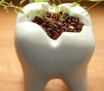 什么种植牙 南京大学医学院附属口腔医院种植牙多少钱