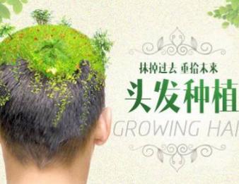 北京大学第三医院毛发移植科疤痕植发多久见效 掩盖伤痕