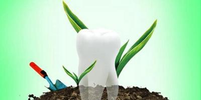 广州种植牙多少钱一颗 紫馨整形张程牙齿种植经验丰富