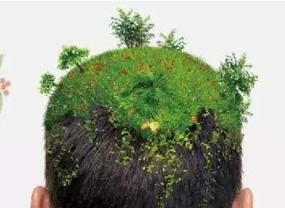 杭州第一附属医院植发科在线咨询 沈海燕种植头发好吗